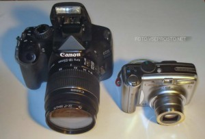 SLR or compact camera